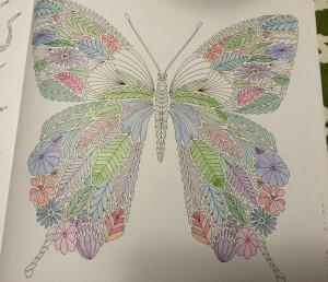 My current Millie Marotta work in progress.
